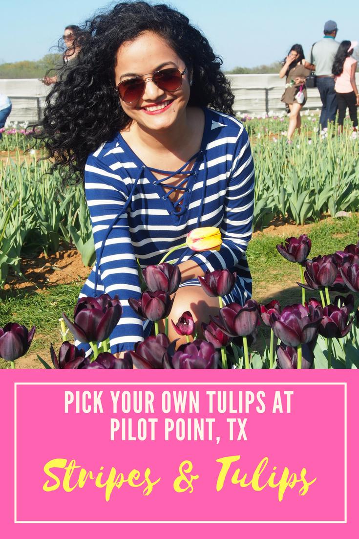 Texas Tulips-girlinchief