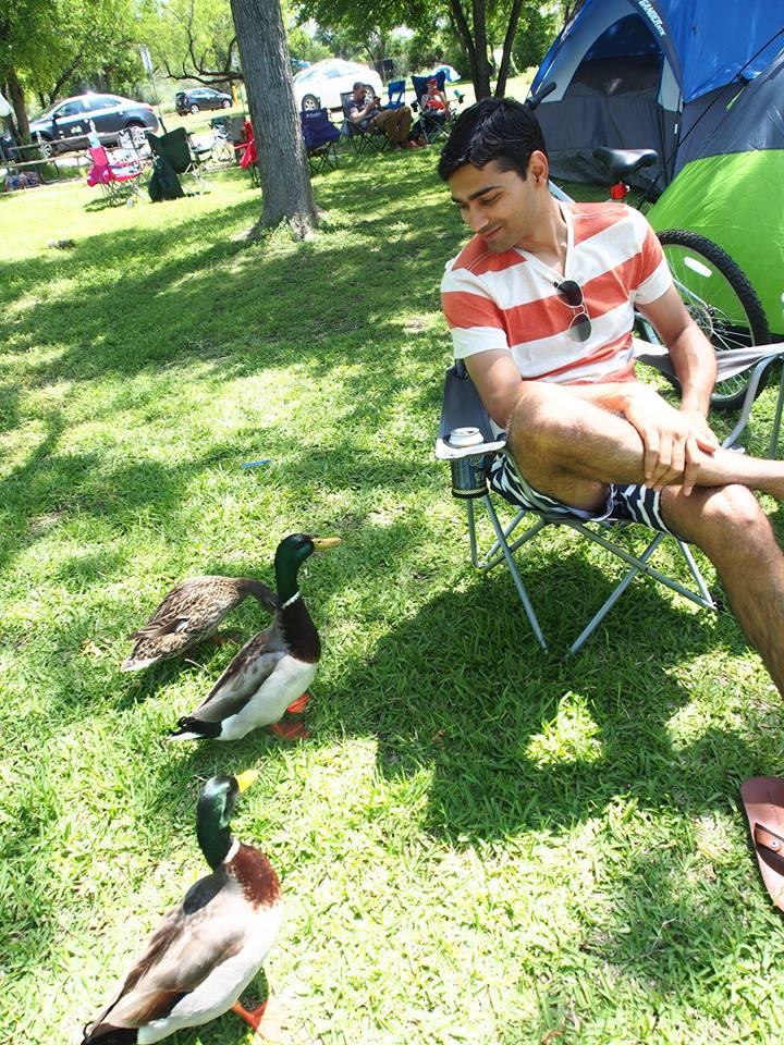 inks-lake-state-park-ducks-2