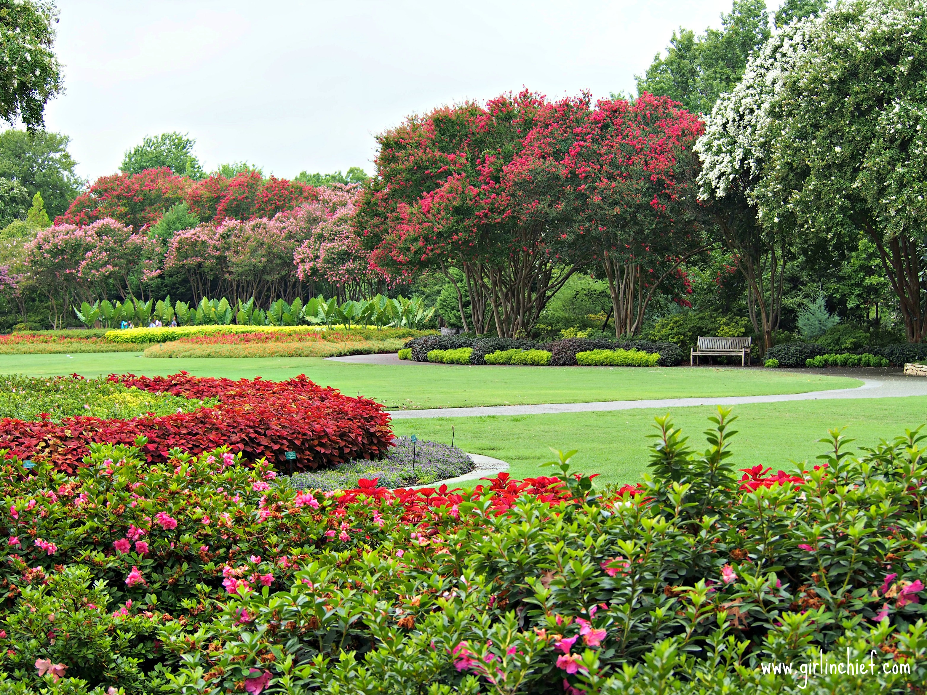 a-day-at-the-dallas-arboretum-1